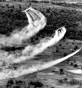 ベトナム戦争枯葉剤