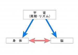 宇宙_身体_脳 made in tada