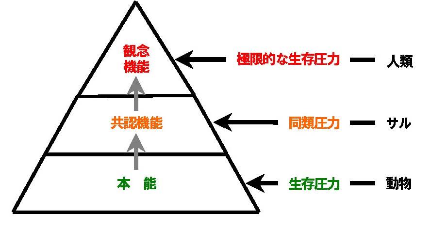 3 本能-共認-観念の図