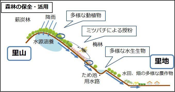画像はこちら(http://o-shige3.blogspot.jp/)からお借りしました。