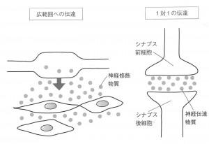 2)拡散性伝達